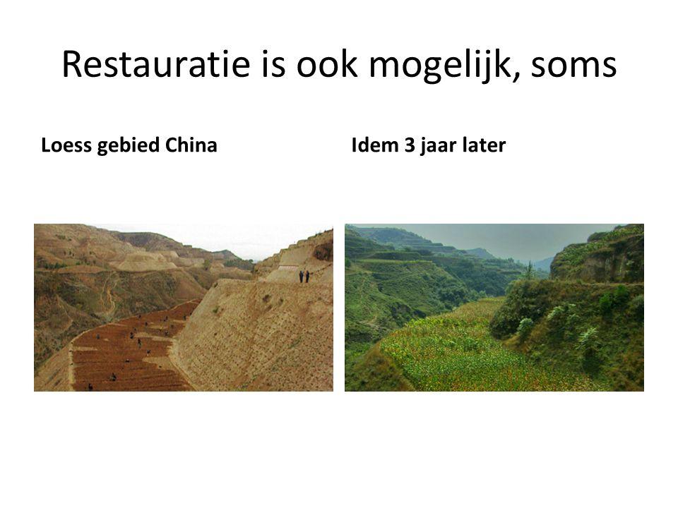 Restauratie is ook mogelijk, soms Loess gebied ChinaIdem 3 jaar later