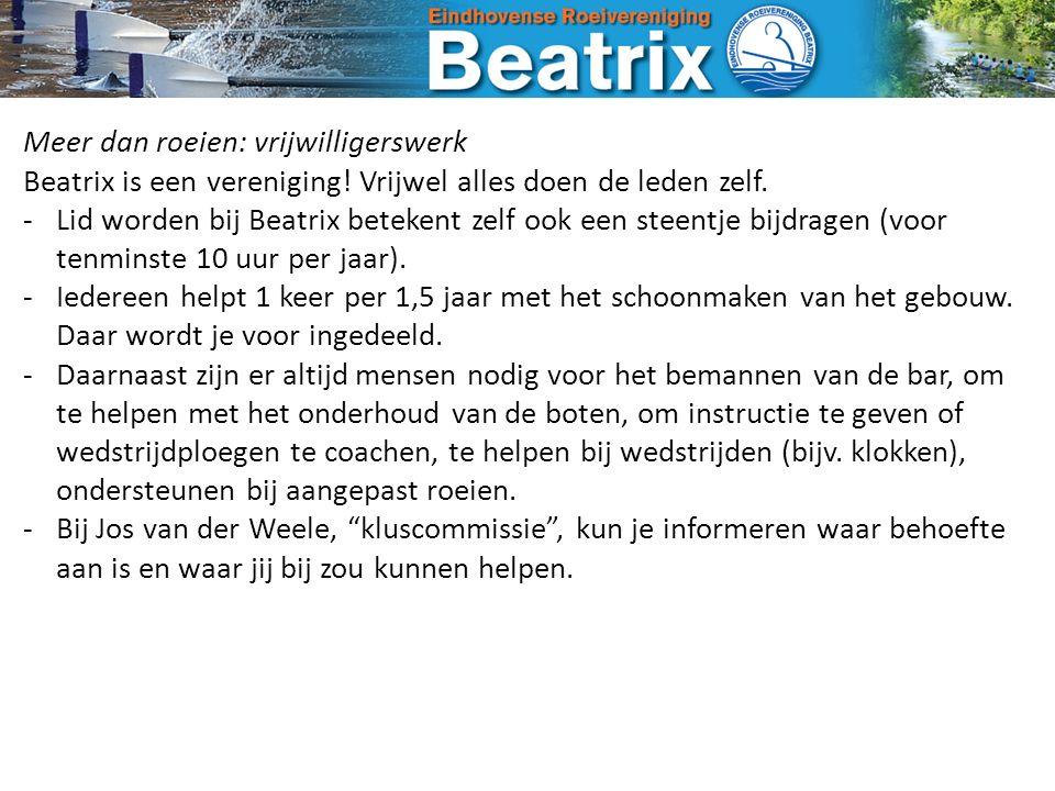 Meer dan roeien: vrijwilligerswerk Beatrix is een vereniging.