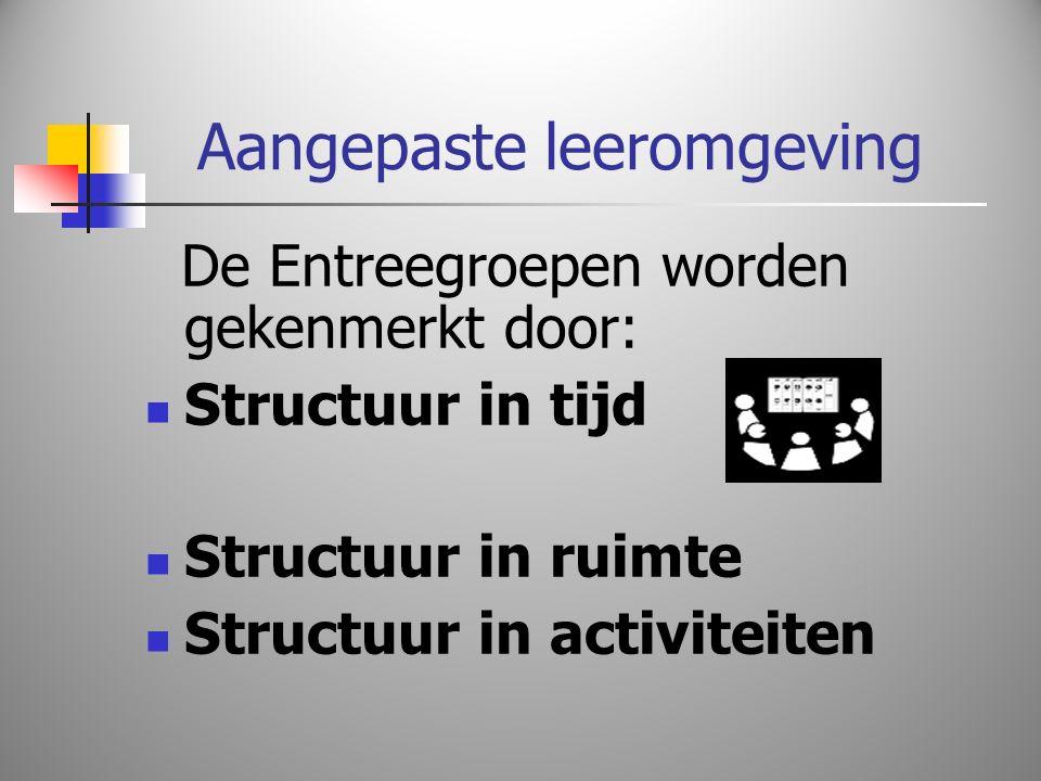 Aangepaste leeromgeving De Entreegroepen worden gekenmerkt door: Structuur in tijd Structuur in ruimte Structuur in activiteiten