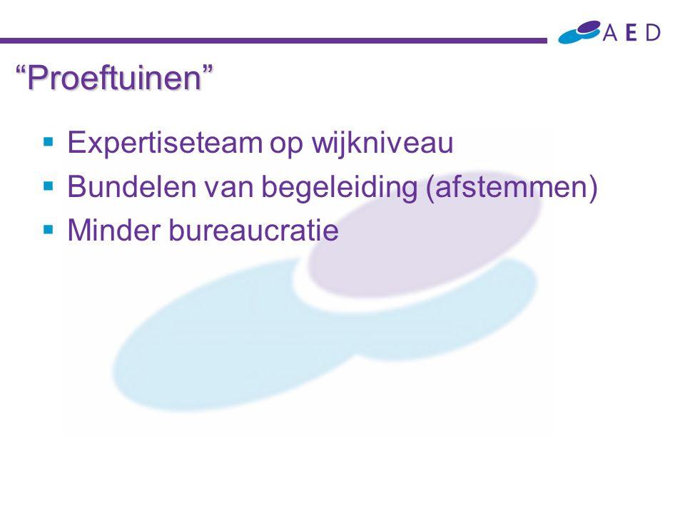"""""""Proeftuinen""""  Expertiseteam op wijkniveau  Bundelen van begeleiding (afstemmen)  Minder bureaucratie"""