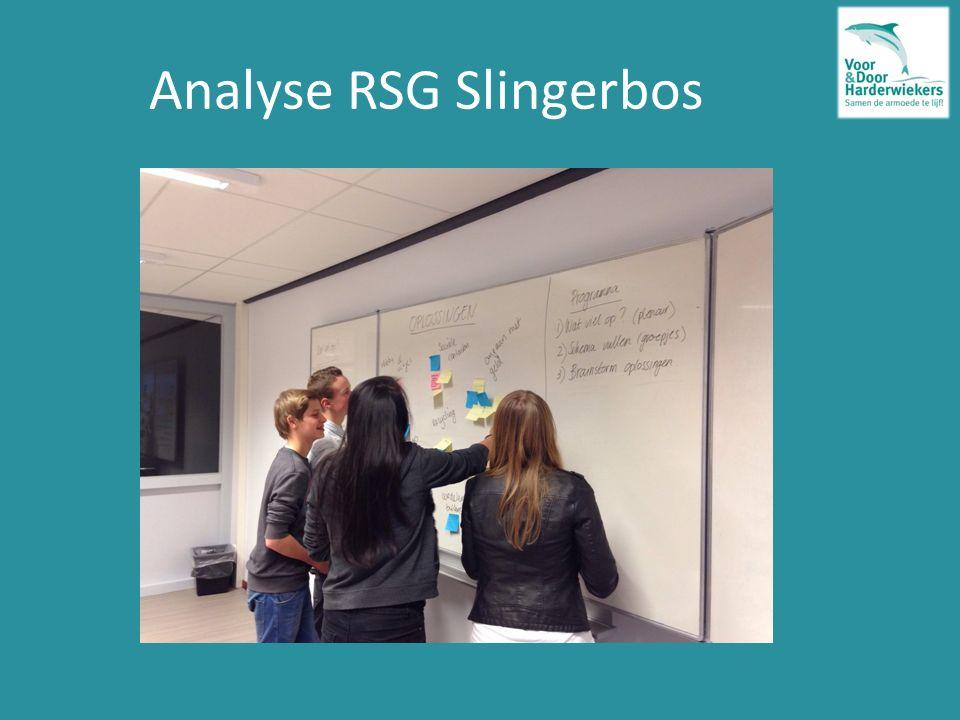 Analyse RSG Slingerbos