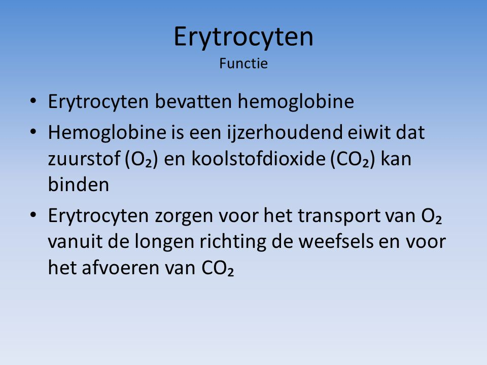 Erytrocyten Functie Erytrocyten bevatten hemoglobine Hemoglobine is een ijzerhoudend eiwit dat zuurstof (O₂) en koolstofdioxide (CO₂) kan binden Erytr