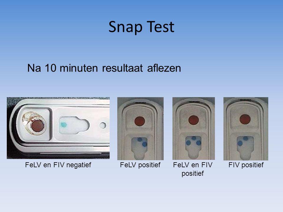 Snap Test Na 10 minuten resultaat aflezen FeLV en FIV negatiefFeLV positiefFeLV en FIV positief FIV positief