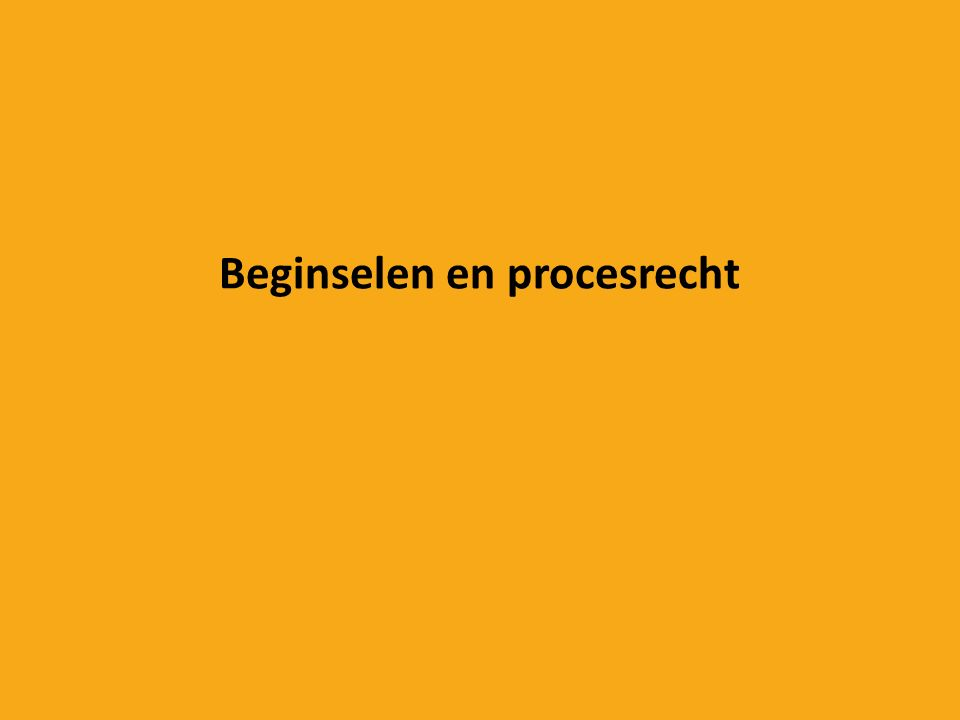 Beginselen en procesrecht