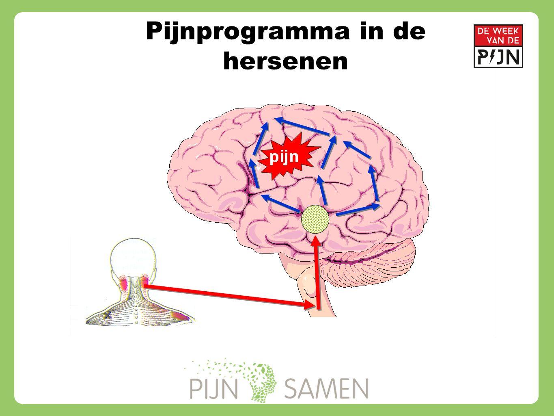Pijnprogramma in de hersenen