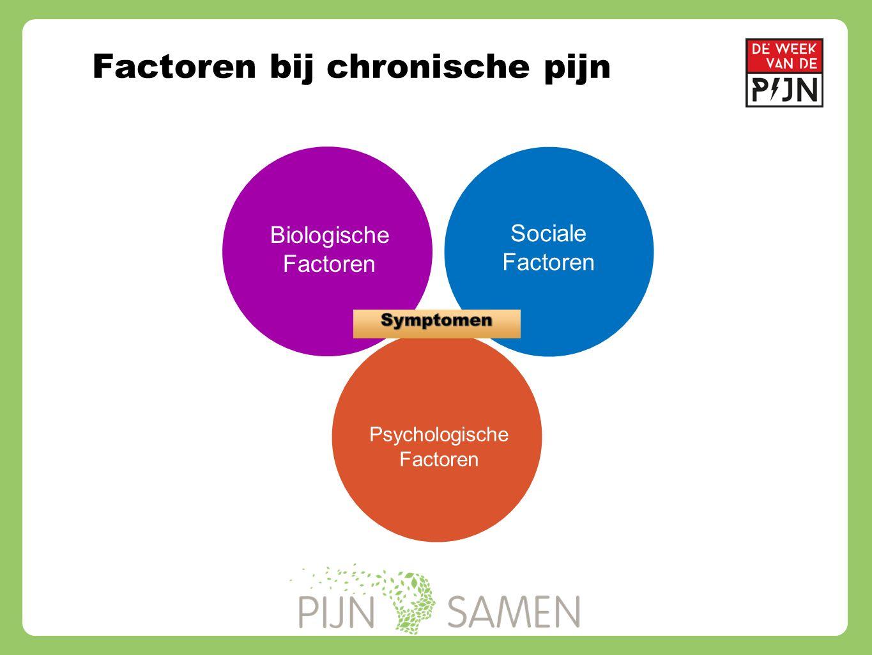 Factoren bij chronische pijn Biologische Factoren Sociale Factoren Psychologische Factoren