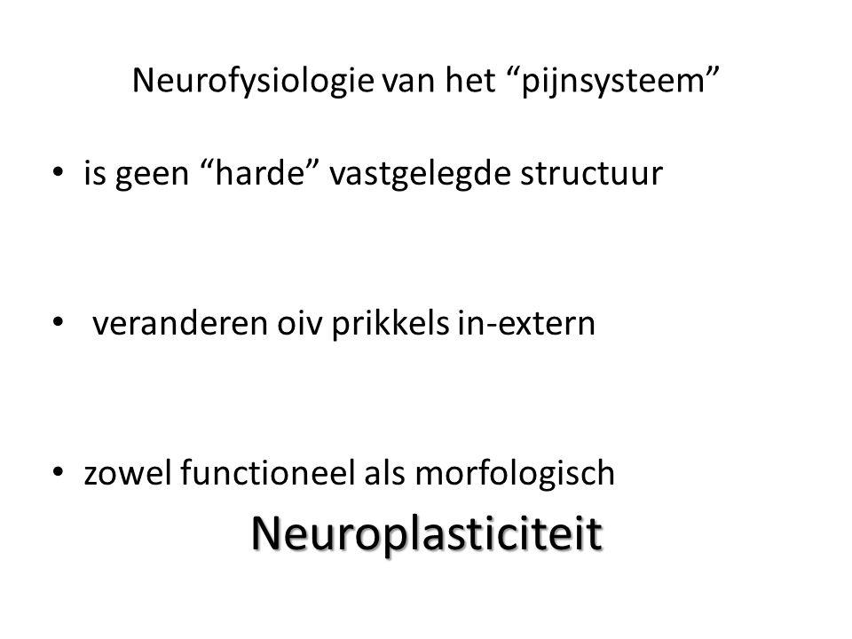 Neurofysiologie van het pijnsysteem is geen harde vastgelegde structuur veranderen oiv prikkels in-extern zowel functioneel als morfologischNeuroplasticiteit