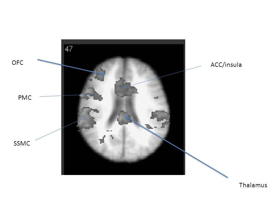 Thalamus ACC/insula OFC PMC SSMC