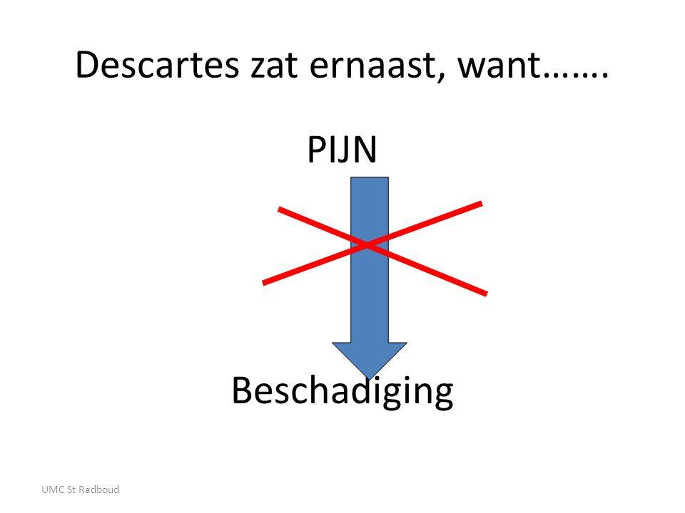 Descartes zat ernaast, want……. PIJN Beschadiging UMC St Radboud