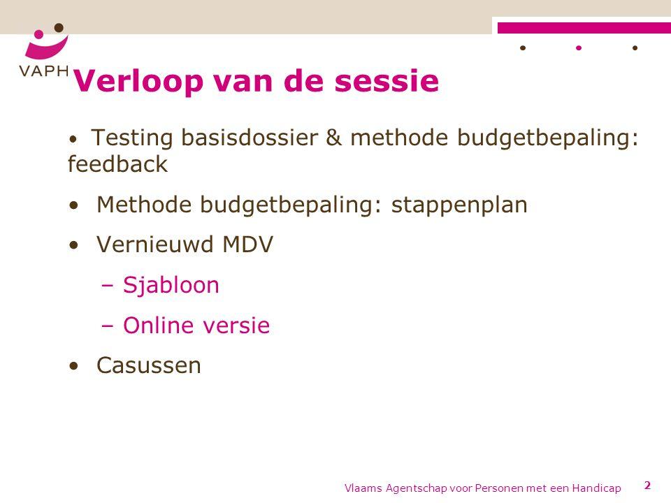 Testing basisdossier & methode budgetbepaling: feedback Vlaams Agentschap voor Personen met een Handicap3
