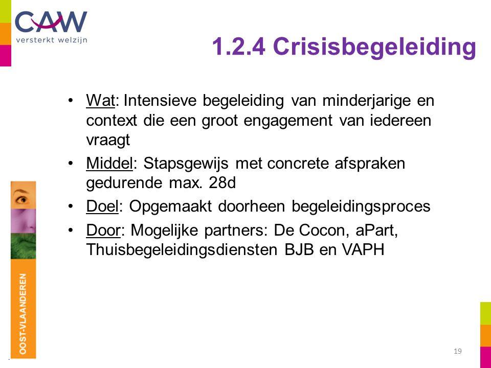 1.2.4 Crisisbegeleiding Wat: Intensieve begeleiding van minderjarige en context die een groot engagement van iedereen vraagt Middel: Stapsgewijs met concrete afspraken gedurende max.
