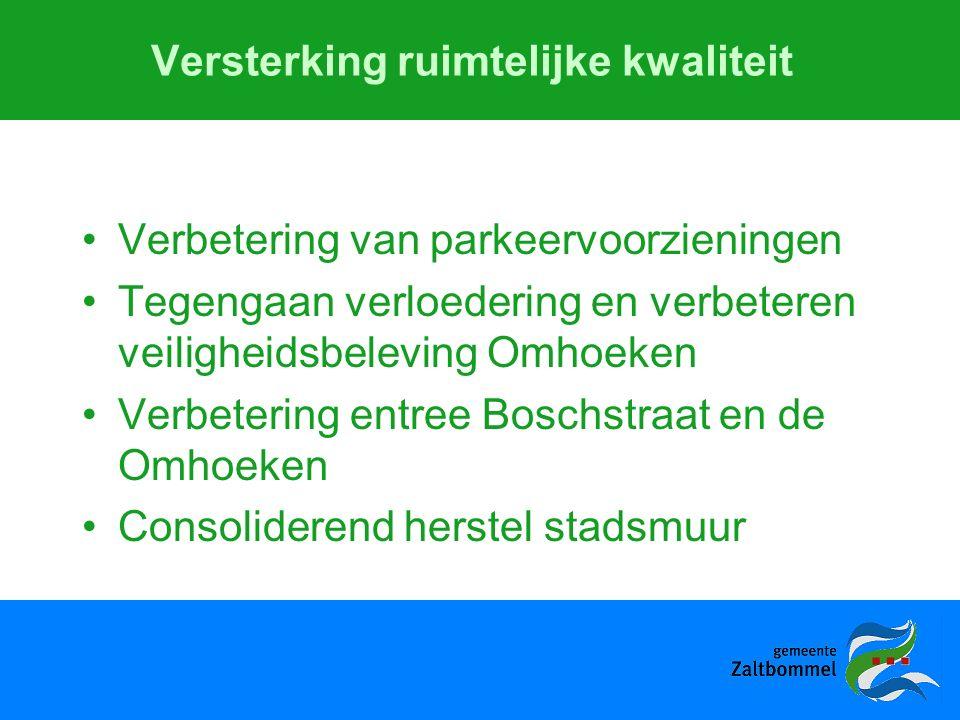 Versterking ruimtelijke kwaliteit Verbetering van parkeervoorzieningen Tegengaan verloedering en verbeteren veiligheidsbeleving Omhoeken Verbetering entree Boschstraat en de Omhoeken Consoliderend herstel stadsmuur