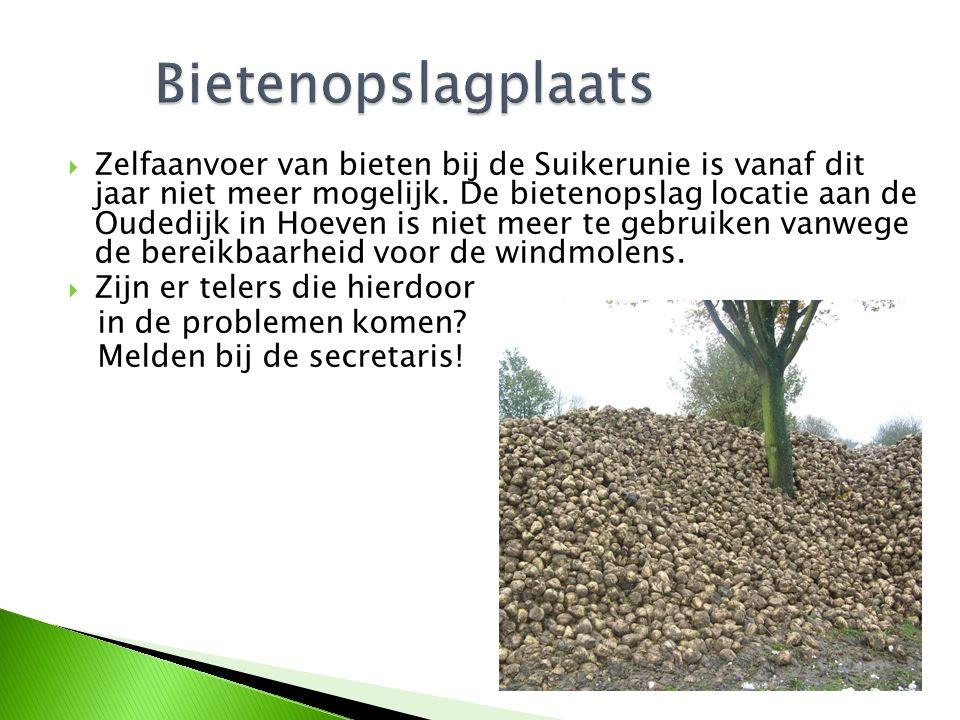  Zelfaanvoer van bieten bij de Suikerunie is vanaf dit jaar niet meer mogelijk. De bietenopslag locatie aan de Oudedijk in Hoeven is niet meer te geb