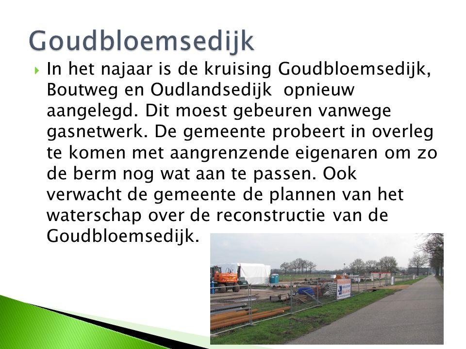  In het najaar is de kruising Goudbloemsedijk, Boutweg en Oudlandsedijk opnieuw aangelegd. Dit moest gebeuren vanwege gasnetwerk. De gemeente probeer