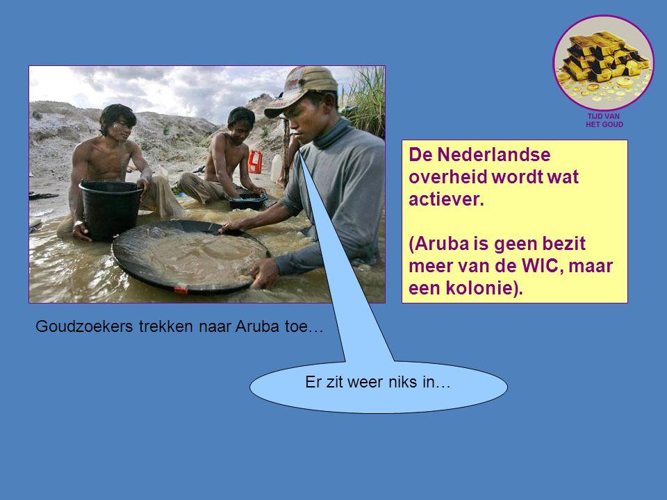 Goudzoekers trekken naar Aruba toe… De Nederlandse overheid wordt wat actiever.