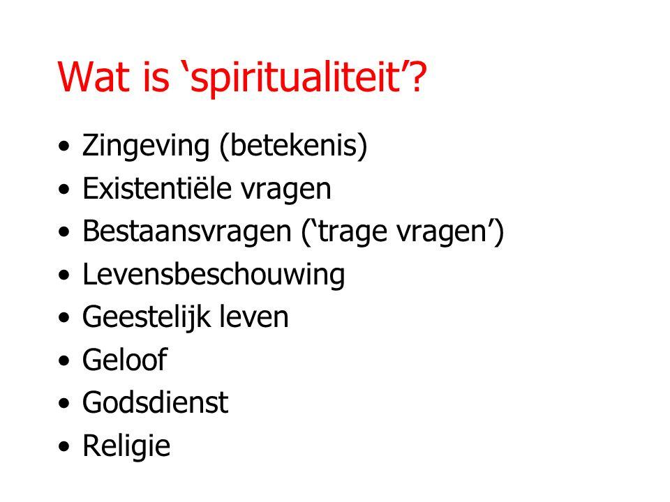 Wat is 'spiritualiteit'? Zingeving (betekenis) Existentiële vragen Bestaansvragen ('trage vragen') Levensbeschouwing Geestelijk leven Geloof Godsdiens