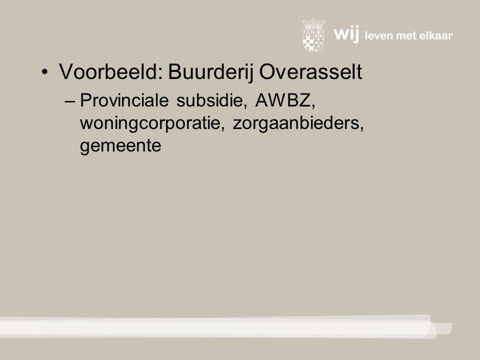 Voorbeeld: Buurderij Overasselt – Provinciale subsidie, AWBZ, woningcorporatie, zorgaanbieders, gemeente