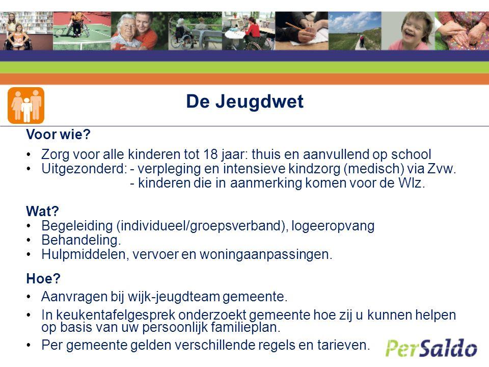 De Wet Maatschappelijke Ondersteuning: Wmo Voor wie.