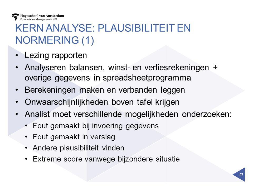 KERN ANALYSE: PLAUSIBILITEIT EN NORMERING (1) Lezing rapporten Analyseren balansen, winst- en verliesrekeningen + overige gegevens in spreadsheetprogr