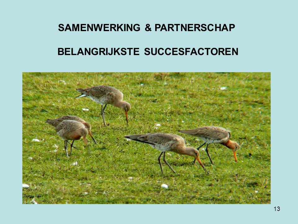 13 SAMENWERKING & PARTNERSCHAP BELANGRIJKSTE SUCCESFACTOREN