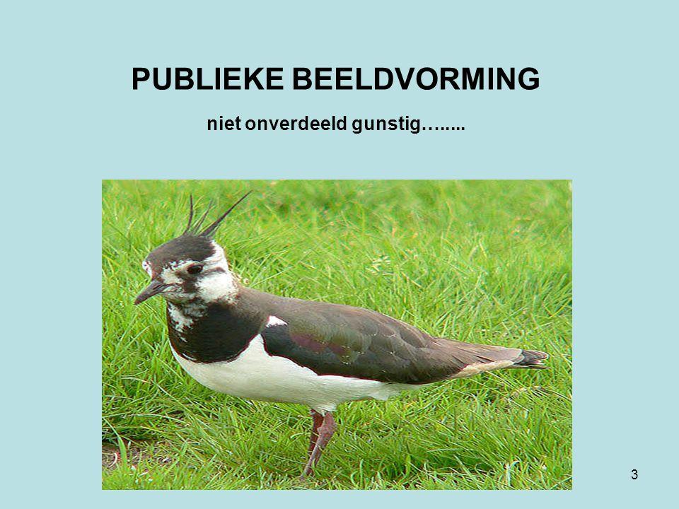 3 PUBLIEKE BEELDVORMING niet onverdeeld gunstig….....