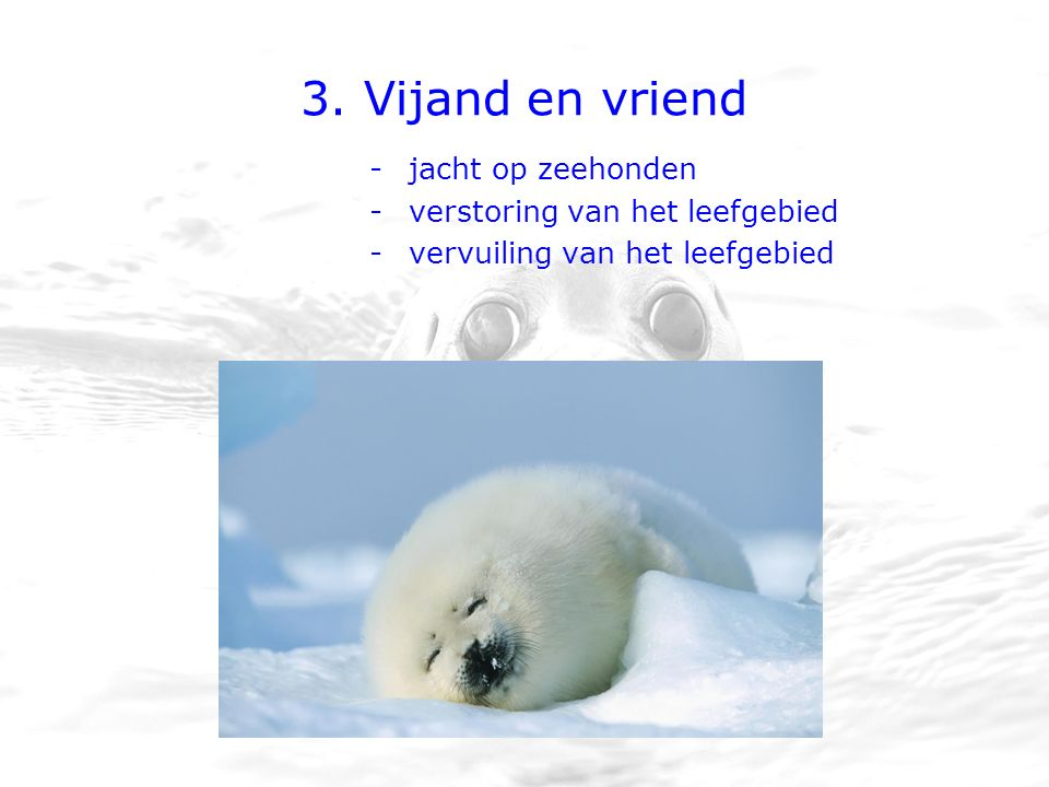 3. Vijand en vriend -jacht op zeehonden -verstoring van het leefgebied -vervuiling van het leefgebied