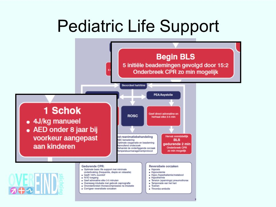 Pediatric Life Support
