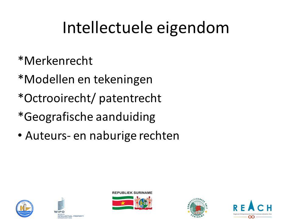 Intellectuele eigendom *Merkenrecht *Modellen en tekeningen *Octrooirecht/ patentrecht *Geografische aanduiding Auteurs- en naburige rechten