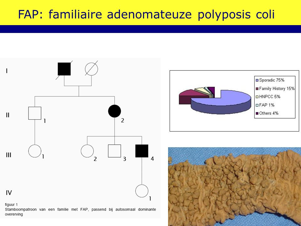 FAP: familiaire adenomateuze polyposis coli