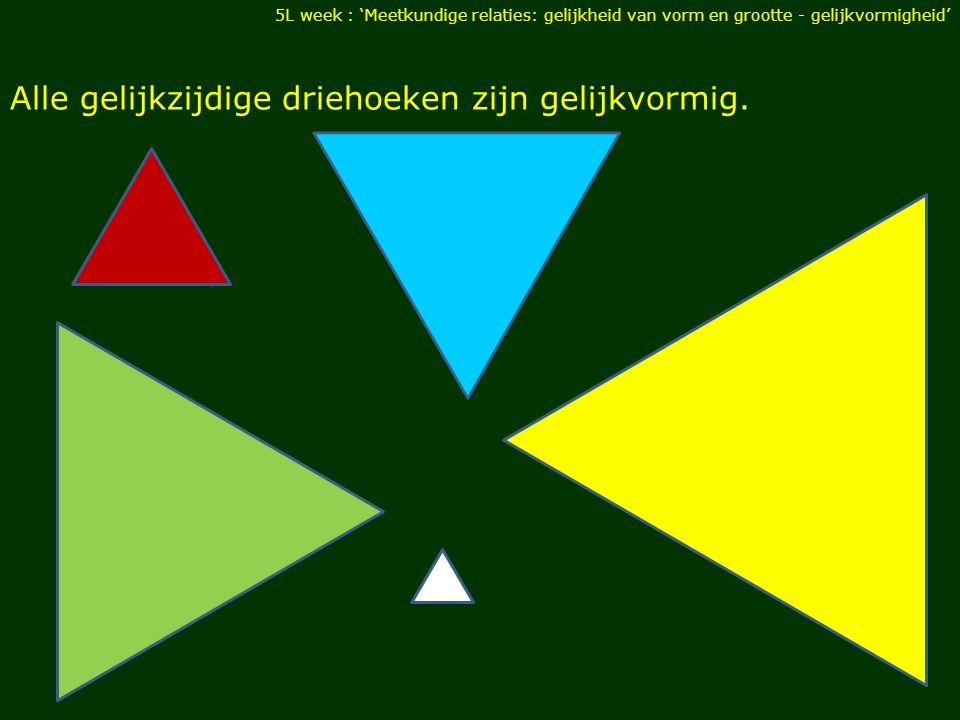 Alle gelijkzijdige driehoeken zijn gelijkvormig. 5L week : 'Meetkundige relaties: gelijkheid van vorm en grootte - gelijkvormigheid'