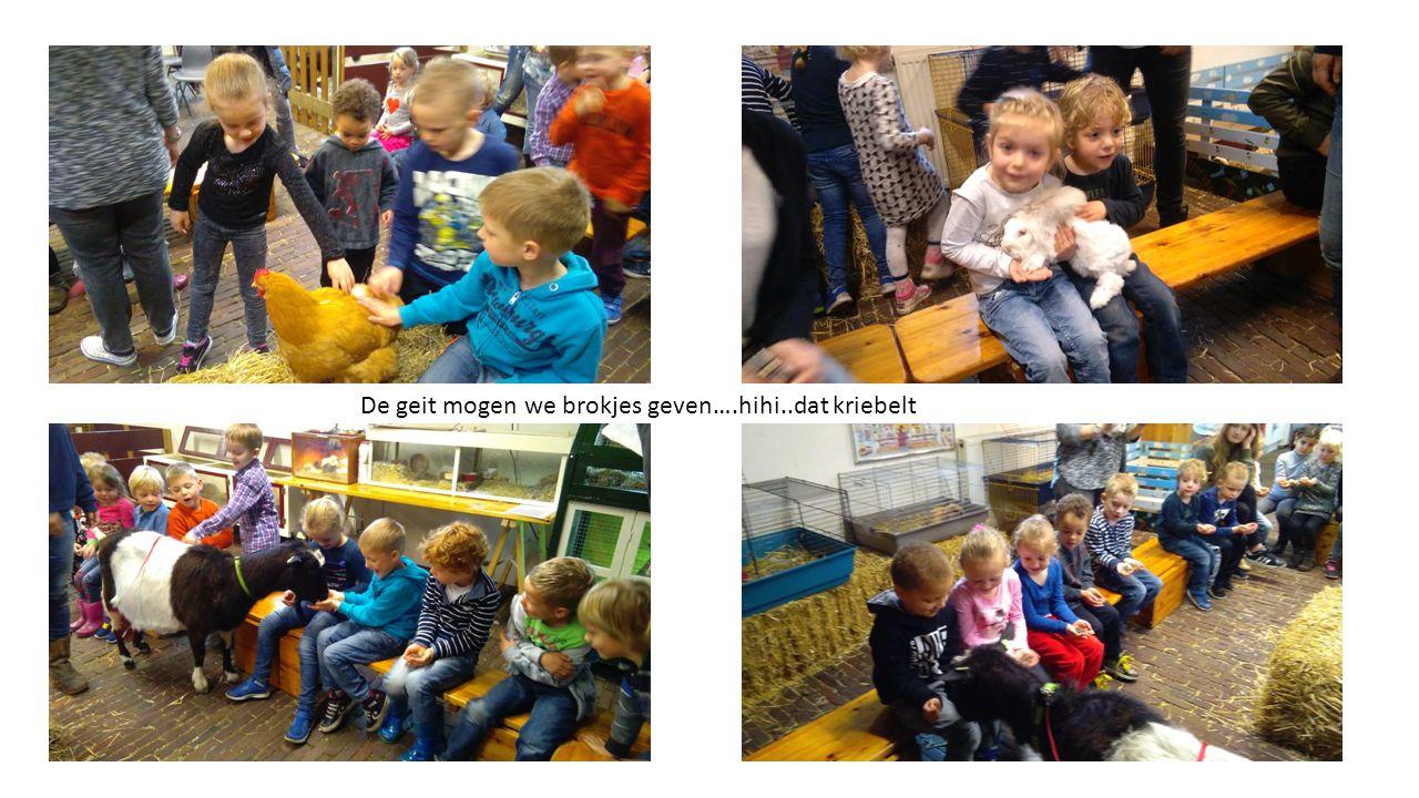 De kinderen vonden het erg leuk op de kinderboerderij, vooral omdat zij de dieren mochten aaien en op schoot konden vasthouden.