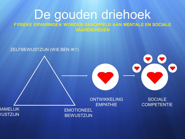 De gouden driehoek FYSIEKE ERVARINGEN WORDEN GEKOPPELD AAN MENTALE EN SOCIALE VAARDIGHEDEN ZELFBEWUSTZIJN (WIE BEN IK ) LICHAMELIJK BEWUSTZIJN EMOTIONEEL BEWUSTZIJN ONTWIKKELING EMPATHIE SOCIALE COMPETENTIE
