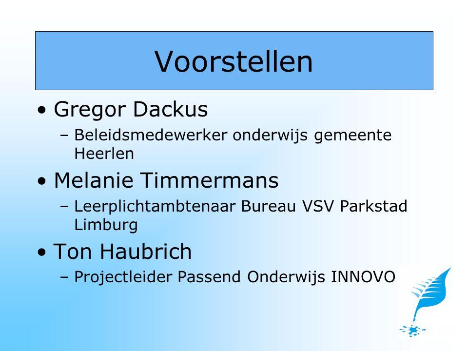 Een VSV-pilot met daaraan verbonden een proeftuintje in het kader van het Veldinitiatief Passend Onderwijs Zuid-Limburg.