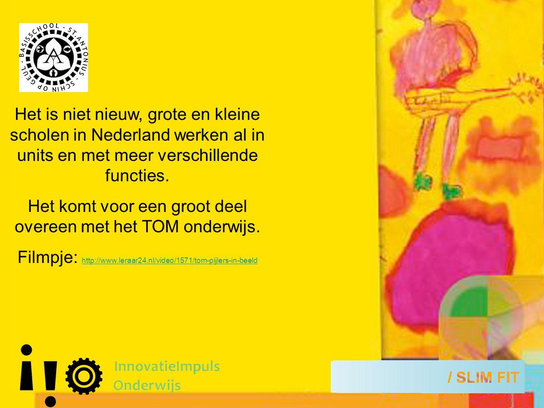 Het is niet nieuw, grote en kleine scholen in Nederland werken al in units en met meer verschillende functies.