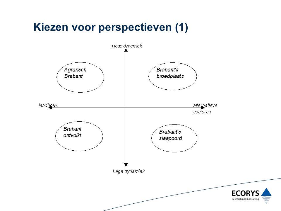 Kiezen voor perspectieven (1)
