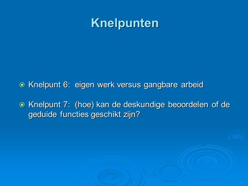 Knelpunten  Knelpunt 6: eigen werk versus gangbare arbeid  Knelpunt 7: (hoe) kan de deskundige beoordelen of de geduide functies geschikt zijn