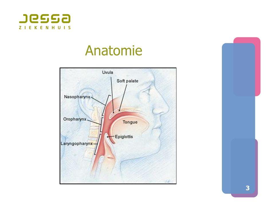 14 Traject van diagnose tot behandeling bij snurken en OSAS  Een polysomnografie bij iedere patiënt  Uitgebreid klinisch onderzoek  Aanvullende slaapendoscopie in geval van OSAS