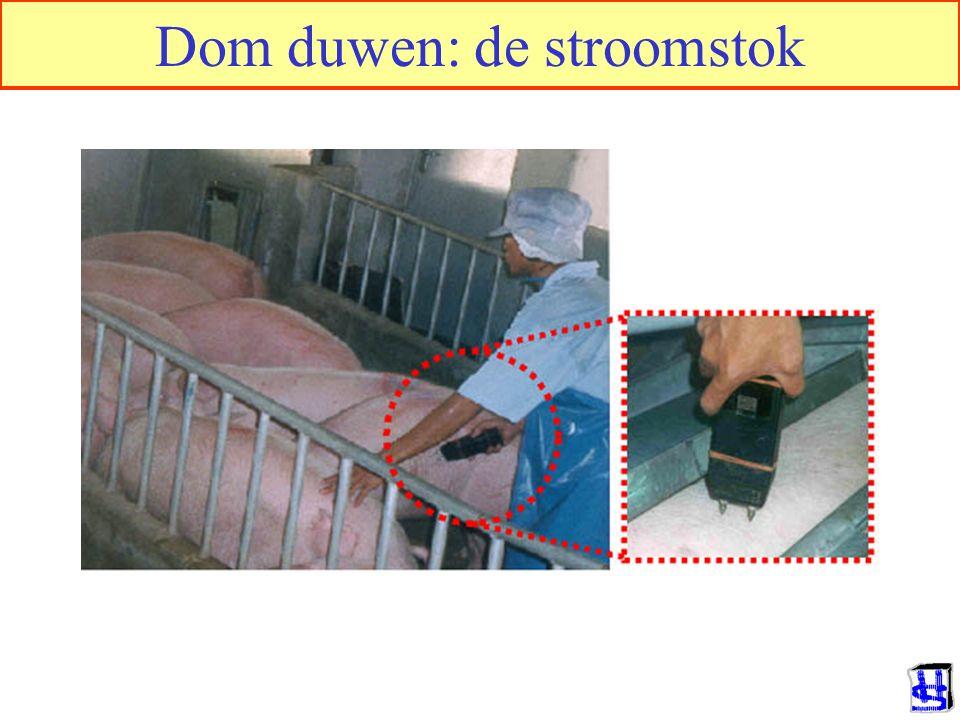 © 2006 JP van de Sande RuG Dom duwen: de stroomstok