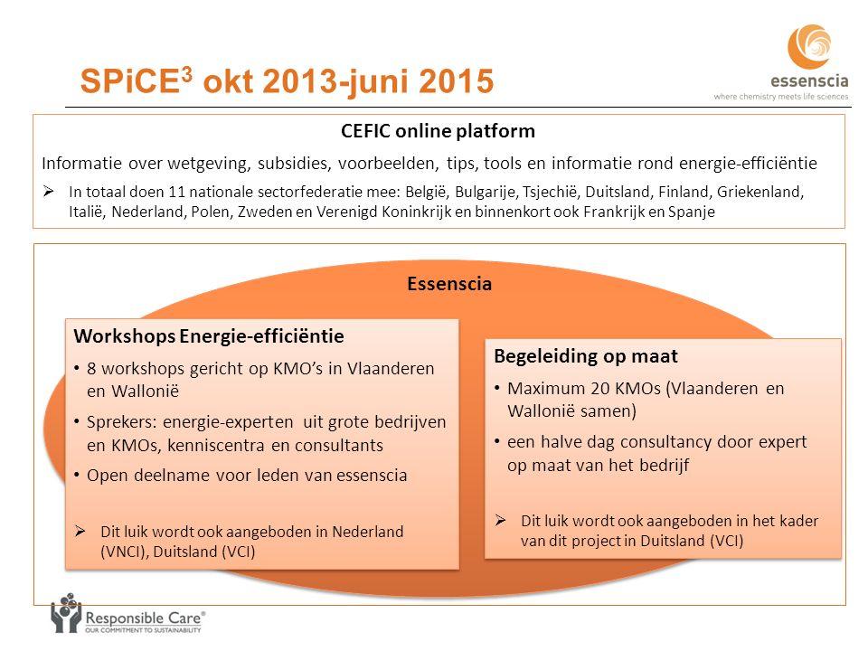 Workshops Energie-efficiëntie 8 workshops gericht op KMO's in Vlaanderen en Wallonië Sprekers: energie-experten uit grote bedrijven en KMOs, kenniscentra en consultants Open deelname voor leden van essenscia  Dit luik wordt ook aangeboden in Nederland (VNCI), Duitsland (VCI) Workshops Energie-efficiëntie 8 workshops gericht op KMO's in Vlaanderen en Wallonië Sprekers: energie-experten uit grote bedrijven en KMOs, kenniscentra en consultants Open deelname voor leden van essenscia  Dit luik wordt ook aangeboden in Nederland (VNCI), Duitsland (VCI) Begeleiding op maat Maximum 20 KMOs (Vlaanderen en Wallonië samen) een halve dag consultancy door expert op maat van het bedrijf  Dit luik wordt ook aangeboden in het kader van dit project in Duitsland (VCI) Begeleiding op maat Maximum 20 KMOs (Vlaanderen en Wallonië samen) een halve dag consultancy door expert op maat van het bedrijf  Dit luik wordt ook aangeboden in het kader van dit project in Duitsland (VCI) SPiCE 3 okt 2013-juni 2015 Essenscia CEFIC online platform Informatie over wetgeving, subsidies, voorbeelden, tips, tools en informatie rond energie-efficiëntie  In totaal doen 11 nationale sectorfederatie mee: België, Bulgarije, Tsjechië, Duitsland, Finland, Griekenland, Italië, Nederland, Polen, Zweden en Verenigd Koninkrijk en binnenkort ook Frankrijk en Spanje