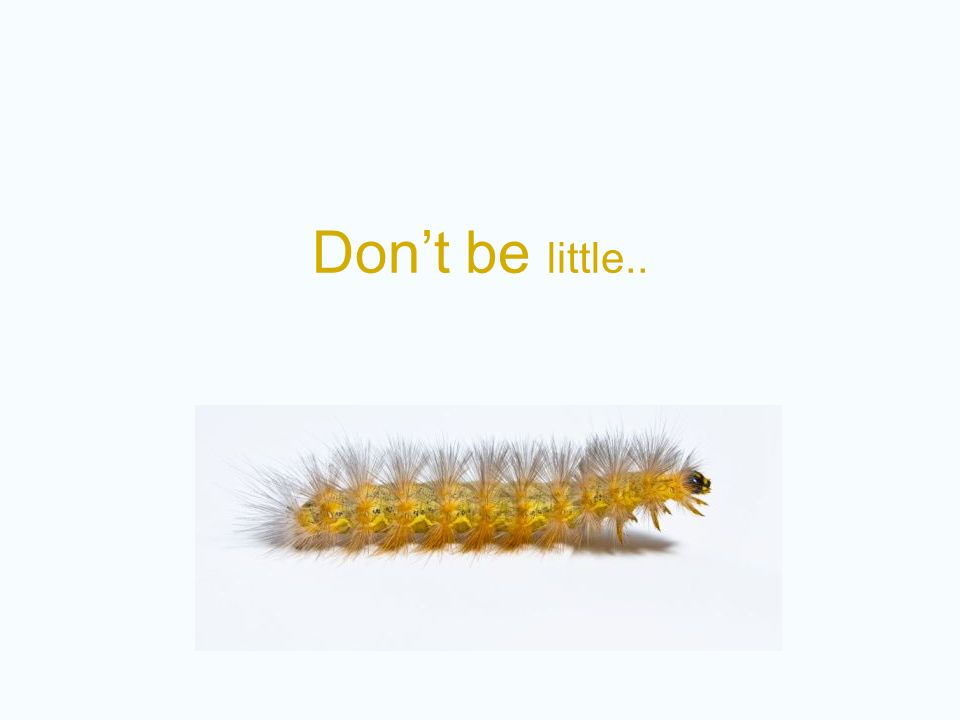 Don't be little..