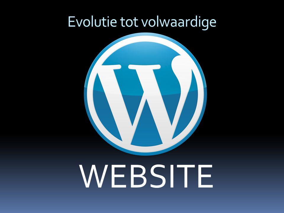 Evolutie tot volwaardige WEBSITE