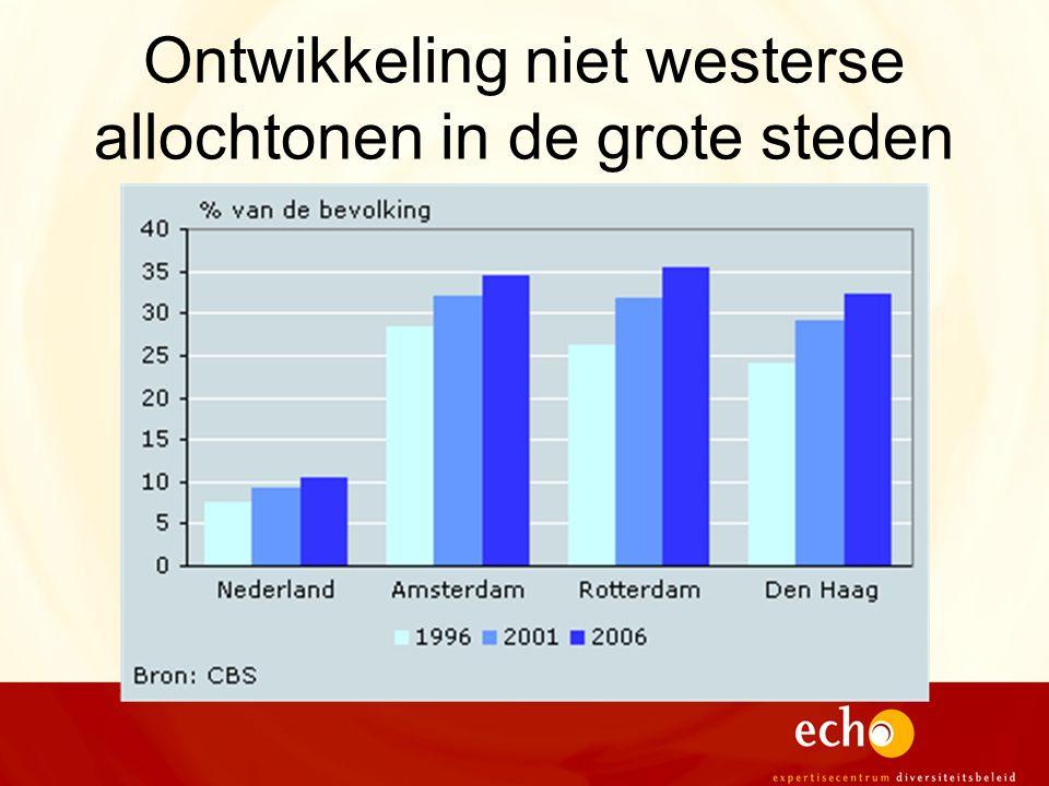 Ontwikkeling niet westerse allochtonen in de grote steden