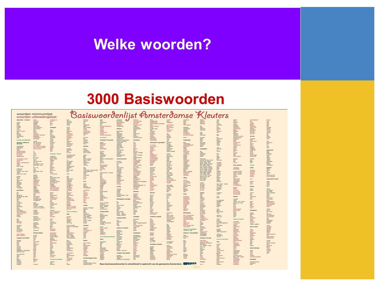 Welke woorden? 3000 Basiswoorden