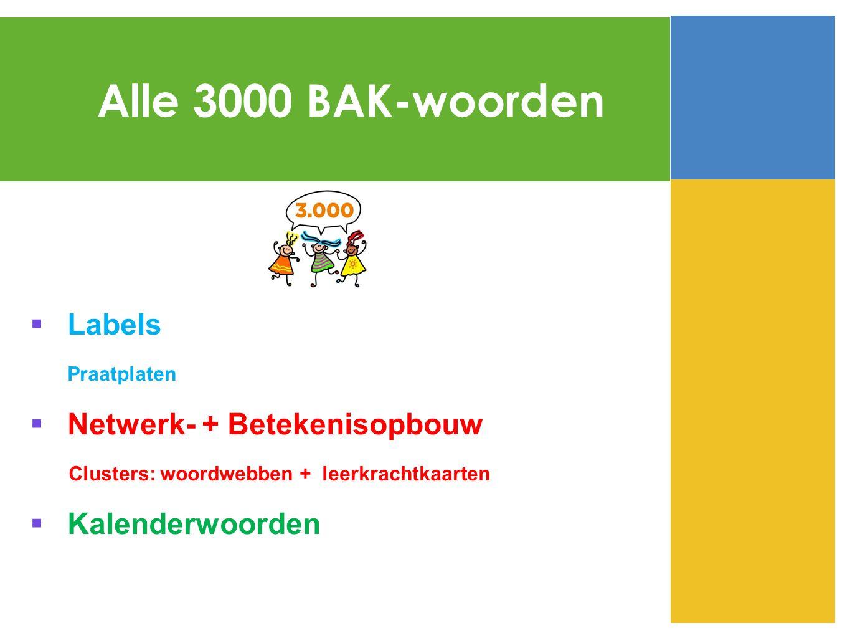  Labels Praatplaten  Netwerk- + Betekenisopbouw Clusters: woordwebben + leerkrachtkaarten  Kalenderwoorden Alle 3000 BAK-woorden