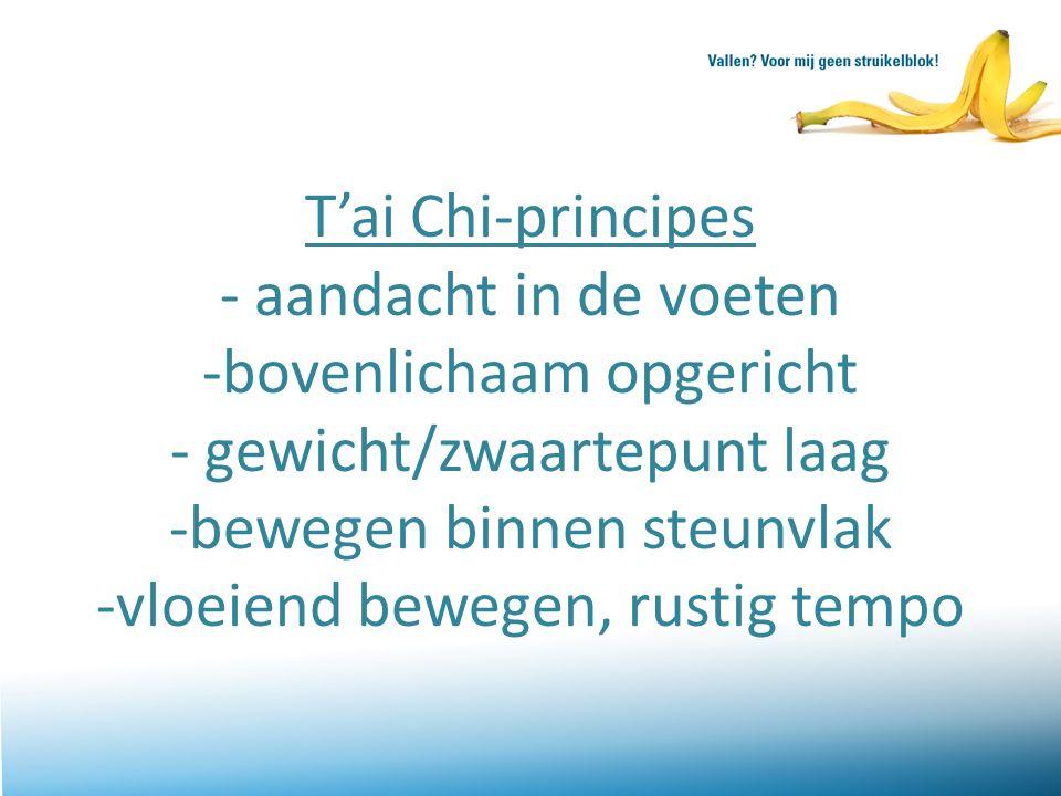 T'ai Chi-principes - aandacht in de voeten -bovenlichaam opgericht - gewicht/zwaartepunt laag -bewegen binnen steunvlak -vloeiend bewegen, rustig tempo