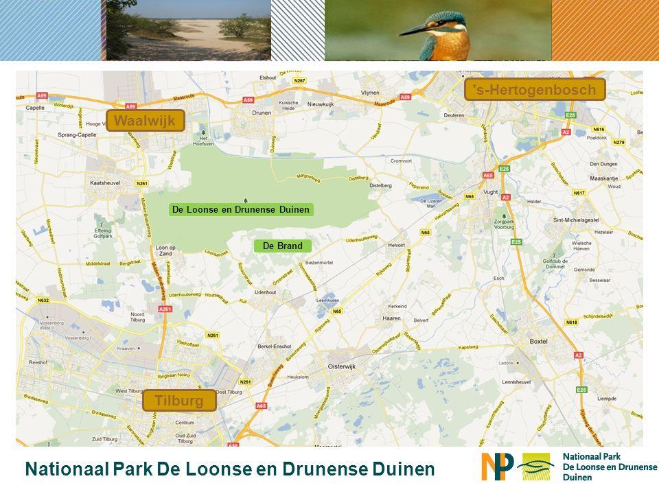 Tilburg s-Hertogenbosch Waalwijk Nationaal Park De Loonse en Drunense Duinen De Loonse en Drunense Duinen De Brand