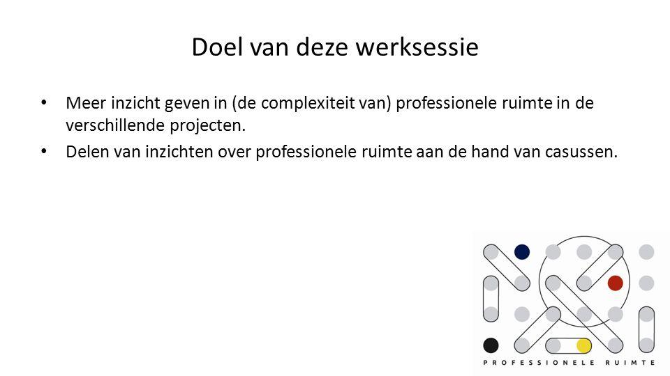 Doel van deze werksessie Meer inzicht geven in (de complexiteit van) professionele ruimte in de verschillende projecten.