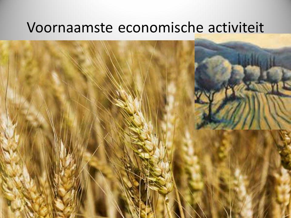 Voornaamste economische activiteit