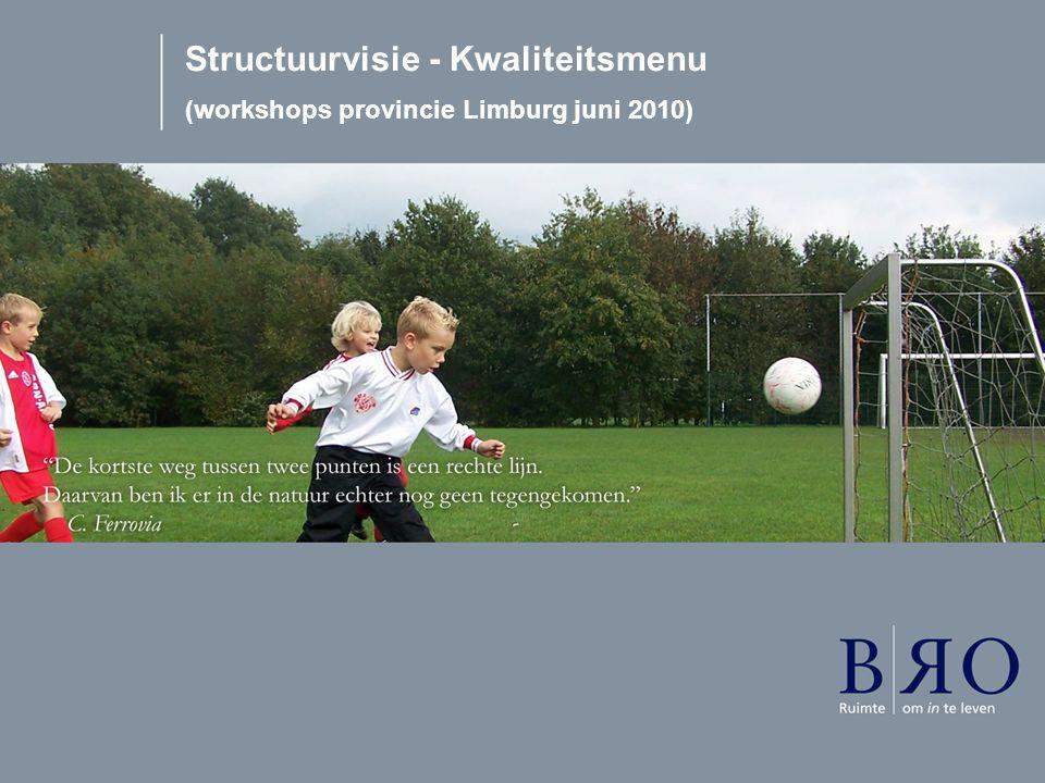 Structuurvisie - Kwaliteitsmenu (workshops provincie Limburg juni 2010)