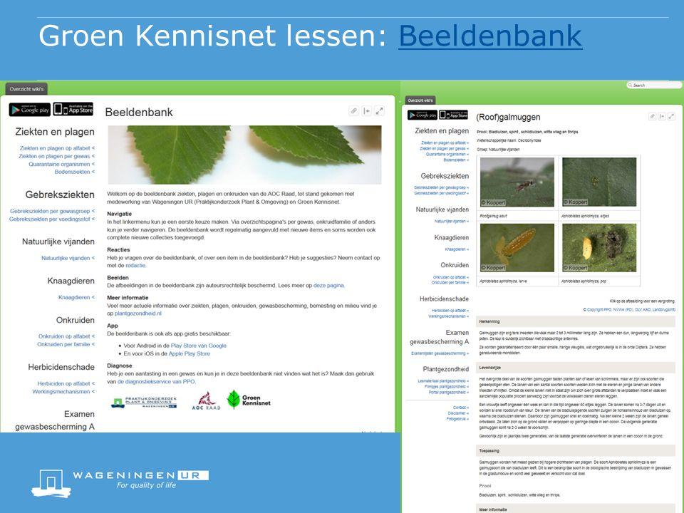 Groen Kennisnet lessen: Wiki'sWiki's